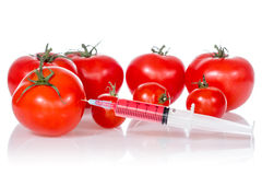 Injection into fresh red tomatoes Royalty Free Stock Photos