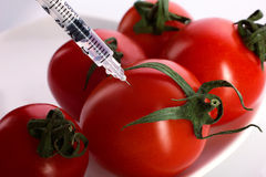 Injection of fresh tomatoes Royalty Free Stock Images