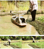 Injection water boat to planting vegetable gardens in gutter Stock Photos