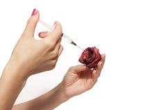 Injektion Royaltyfri Bild