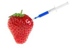 Injektionsspruta för frukt för begrepp för vetenskapstransgenemat med Royaltyfri Bild