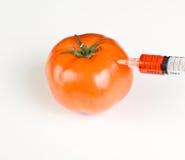 Injicera en tomat, gmo Royaltyfri Fotografi