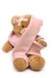 Injured Bear Stock Images