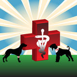 Injured dogs. Abstract colorful illustration with injured dogs, a red cross and the veterinary symbol in the middle of the image vector illustration