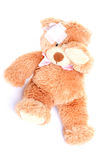 Injured Sweet Teddy Bear Royalty Free Stock Photos