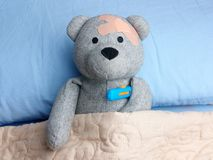 Injured Teddy Bear plasters head bed thermometer flu Stock Photography