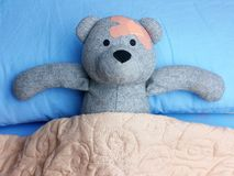 Injured Teddy Bear plasters resting in the bed. Injured Teddy Bear with plasters on head resting in the bed stock photo