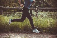 Inkörd maraton höstskogen Royaltyfria Foton