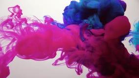 Ink cloud motion magenta pink blue fume puff