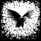 Black crow. Ink illustration of a black crow that was traced to the vector format Royalty Free Stock Image