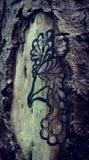 ink& x27; D-träd vektor illustrationer