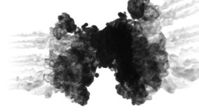 Ink dissolves in water on white background with luma matte. 3d render of computer simulation. Black inks inject in water. Ink dissolves in water on white stock video