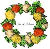 Ink drawing apple wreath Stock Photography