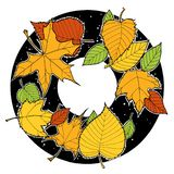 Ink drawing autumn foliage round frame, maple and birch leaves, green, orange, yellow. Leaves royalty free illustration