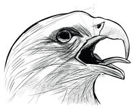 Ink drawing of Langkawi eagle Royalty Free Stock Image