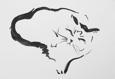 Ink Drawing Of A Cat Stock Image