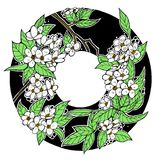 Ink drawing spring flower round frame, apple tree, green and white royalty free illustration