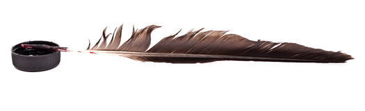Ink feather. Isolated on white Royalty Free Stock Photography