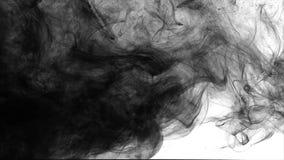Ink flowing slowly in water. stock video footage
