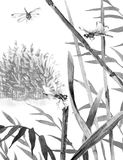 Ink Flying Dragonflies and Reeds. Watercolor painting.  Hand drawn  illustration. Monochrome serenity nature scene with reeds, flying dragonflies. Wetland ink Royalty Free Stock Photography