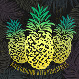 Ink hand drawn background with pineapples. Vector background. design elements ready for any creative use stock illustration