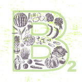 Ink hand drawn fruits and vegetables that contain vitamin B2 Stock Images