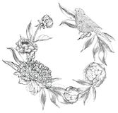 Ink hand drawn illustrations of ornate peonies Stock Photos