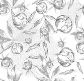 Ink hand drawn illustrations of ornate peonies, pattern Royalty Free Stock Photo