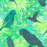 Ink hand drawn Jungle seamless pattern with Birds on Palm leaves Stock Photography