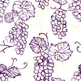 Ink hand drawn seamless pattern with grape Stock Photos