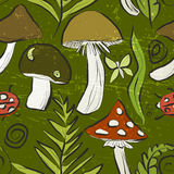 Ink hand drawn seamless pattern with mushrooms and forest flora Stock Photography