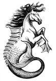 Hippocampus. Ink illustration of a mythological hippocampus Stock Photography