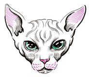 Sphinx cat. Ink illustration of a sphinx cat head Stock Photography
