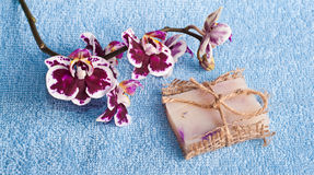 Рink orchid and soap Royalty Free Stock Image