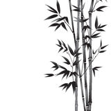 Ink paint bamboo. Stock Photos
