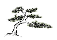 Ink painting pine tree. Wall decoration art background Royalty Free Stock Image