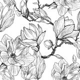Ink, pencil, the leaves and flowers of Magnolia. Seamless pattern background. Hand drawn nature painting. Freehand. Magnolia flowers drawing. Illustration and Stock Photos