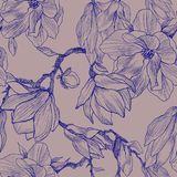Ink, pencil, the leaves and flowers of Magnolia. Seamless pattern background. Hand drawn nature painting. Freehand. Magnolia flowers drawing. Illustration and Stock Photography