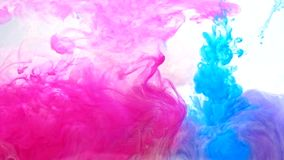Ink shot motion magenta pink blue fume flow white