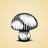 Ink Sketch of a Mushroom with White Fill Royalty Free Stock Photography