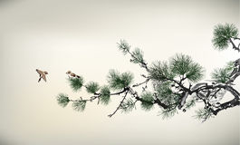 Ink style Pine Tree stock illustration