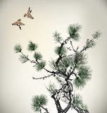 Ink style Pine Tree Stock Photos