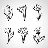Ink style  sketch set - spring flowers Royalty Free Stock Photos
