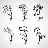 Ink style  sketch set - summer flowers Stock Photos