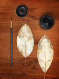 Ink, two dry leaves and brush Stock Image