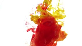 Colour ink reacting in water creating abstract cloud formations. red yellow ink on white background. Ink in water. Colour ink reacting in water creating abstract stock footage