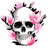 Skull and blossom. Ink and watercolor illustration of a human skull and magnolia blossom vector illustration