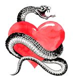 Heart and snake. Ink and watercolor illustration of a poisonous snake around red human heart Stock Photography