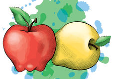 Ink and Watercolor Style Apples. A vector illustration of a red and yellow apple in an ink and watercolor style on a splattered background royalty free illustration