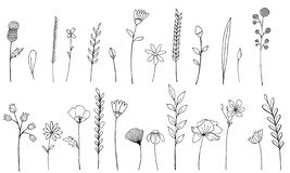 Ink wildflowers isolated elements. Hand drawn poppy, burdock, wheat, grass, wild rose, chamomile, cornflower, geranium stock illustration